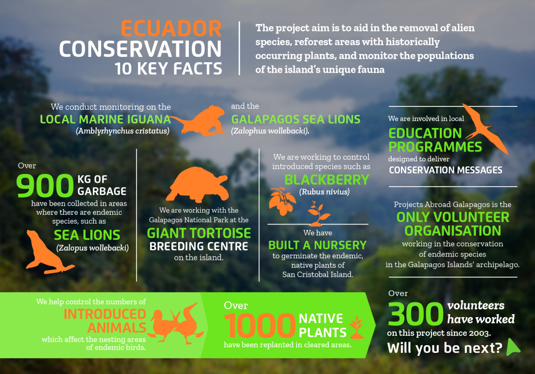 Interesting facts about conservation volunteering in Ecuador with projects abroad